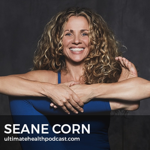 310: Seane Corn - Revolution Of The Soul,  Yoga Is An Art, Understanding The Chakras
